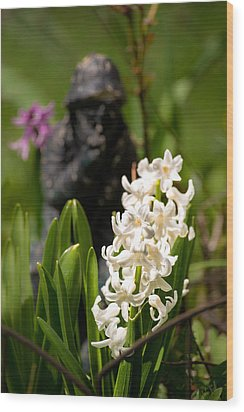 White Hyacinth In The Garden Wood Print