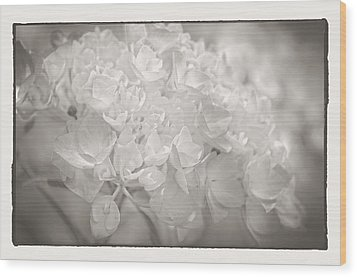 Wood Print featuring the photograph White Hydrangea by Craig Perry-Ollila