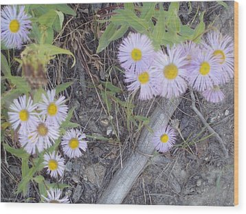 Wood Print featuring the photograph White In The Wild by Fortunate Findings Shirley Dickerson
