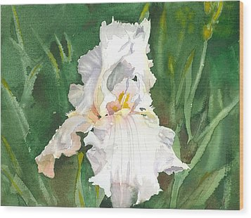 White Iris Wood Print by Spencer Meagher
