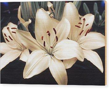 White Lily Beauty Wood Print