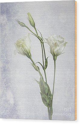 White Lisianthus Flowers Wood Print by Shirley Mangini