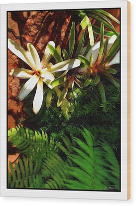 White Maui Flowers Wood Print by Joan  Minchak
