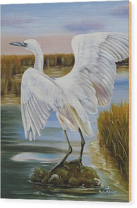 White Morph Reddish Egret At Creole Gap Wood Print by Phyllis Beiser