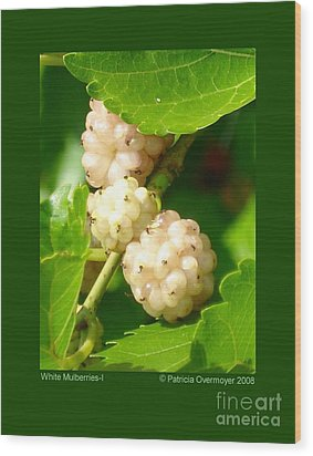 White Mulberries-i Wood Print by Patricia Overmoyer