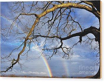 White Oak And Double Rainbow Wood Print by Thomas R Fletcher