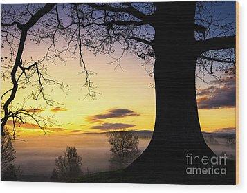 White Oak At Sunrise Wood Print by Thomas R Fletcher