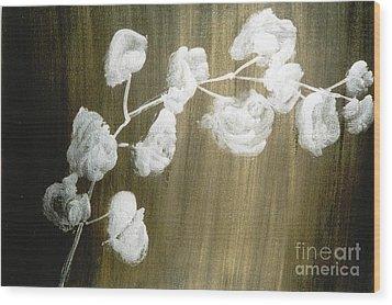 White Orchid Wood Print by Fereshteh Stoecklein