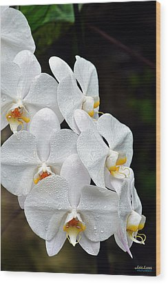Wood Print featuring the photograph White Orchids After The Rain by Aloha Art