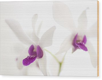 Wood Print featuring the photograph White Orchids by Bradley R Youngberg
