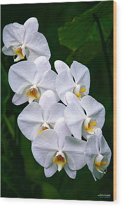 Wood Print featuring the photograph White Orchids by Aloha Art