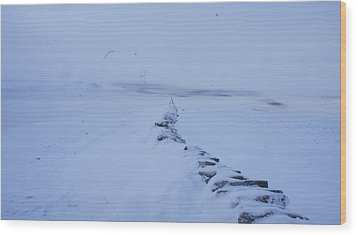 White Out Wood Print by Riley Handforth