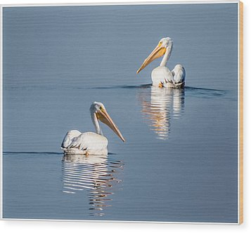White Pelicans Wood Print by Patti Deters