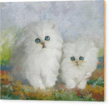White Persian Kittens  Wood Print by Catf
