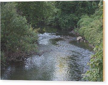 White Plains Stream Wood Print by John Telfer