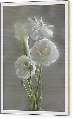 White Ranunculus  Wood Print