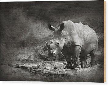 White Rhinoceros Wood Print by Johan Swanepoel