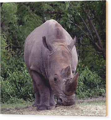 White Rhinoceros Water Coloring Wood Print
