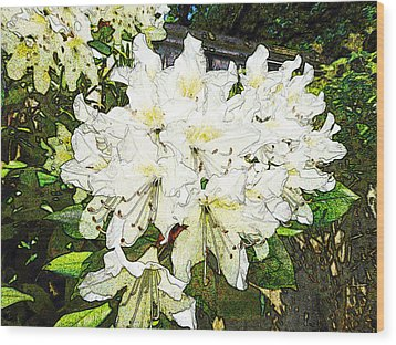 Wood Print featuring the photograph White Rhodo Chalk by Laurie Tsemak