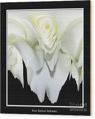 White Rose Abstract Wood Print by Rose Santuci-Sofranko