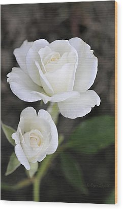 White Rose Duo Wood Print