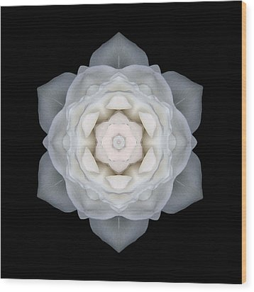 White Rose I Flower Mandala Wood Print