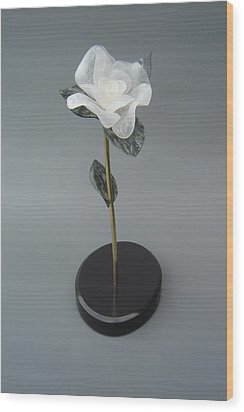White Rose Wood Print by Leslie Dycke