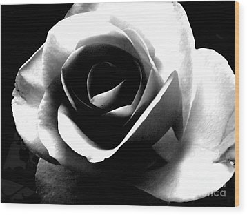 White Rose Wood Print by Nina Ficur Feenan