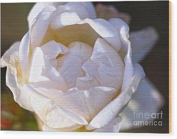 White Rose Wood Print by Nur Roy