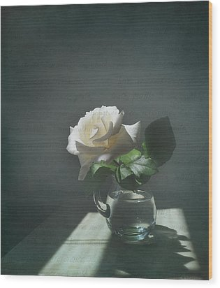 White Rose Still Life Wood Print