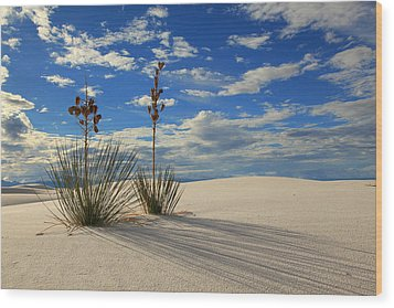 White Sands Afternoon 2 Wood Print by Alan Vance Ley