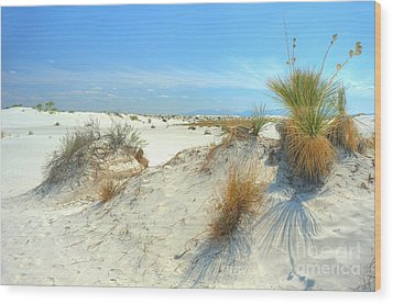 White Sands Foliage Wood Print by John Kelly