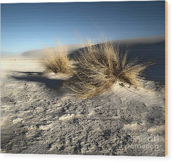 White Sands New Mexico Among The Dunes Wood Print by Gregory Dyer