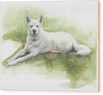 White Sled Dog Lying On Grass Watercolor Portrait Wood Print by Mike Theuer
