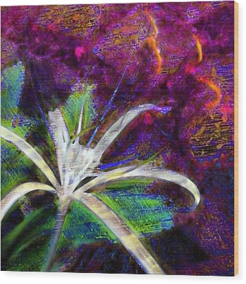 White Spider Flower On Orange And Plum - Square Wood Print