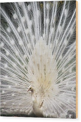 Wood Print featuring the photograph White Spray by Blair Wainman