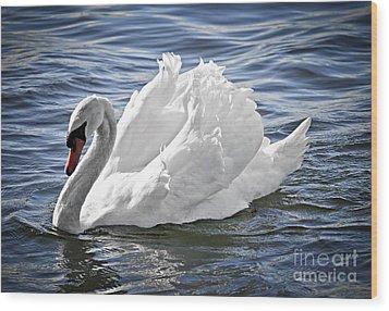 White Swan On Water Wood Print