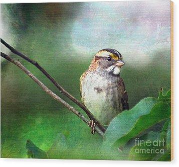 White-throated Sparrow Wood Print by Kerri Farley