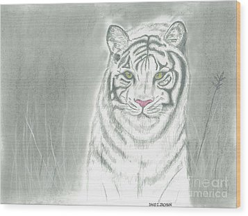 Wood Print featuring the pastel White Tiger by David Jackson