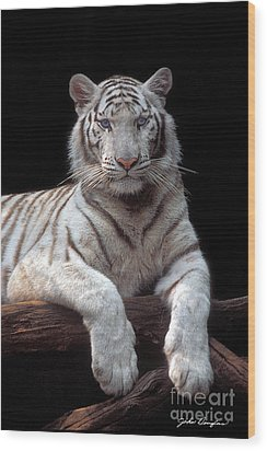 White Tiger Wood Print
