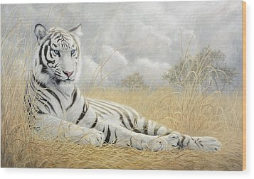 White Tiger Wood Print by Lucie Bilodeau