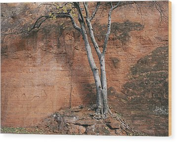 White Tree And Red Rock Face Wood Print