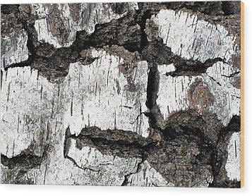 Wood Print featuring the photograph White Tree Bark by Crystal Hoeveler