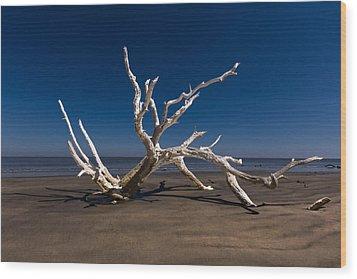 White Tree Wood Print by Debra and Dave Vanderlaan