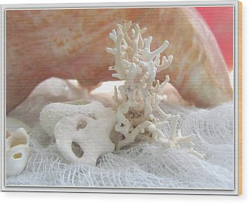 White Urchin Light Pink Corals And Conch Seashell Wood Print by Danielle  Parent