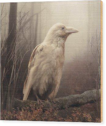 White Wild Raven Wood Print by Cindy Grundsten