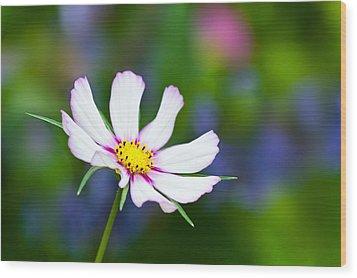 White Wildflower Wood Print by Joan Herwig