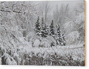 White Winter Day Wood Print