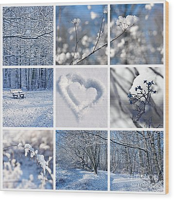 White Winter Wood Print by Delphimages Photo Creations