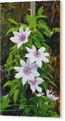 White With Purple Flowers 2 Wood Print